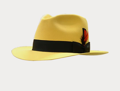 Hats and Caps: Great Selection and Prices at AzTex Hats